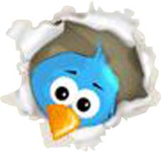 5dde0-bird