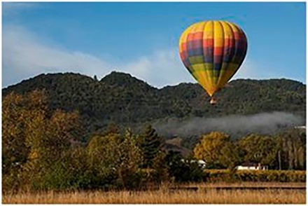 Hot Air Balloon Rides – A Common Napa Valley Picture